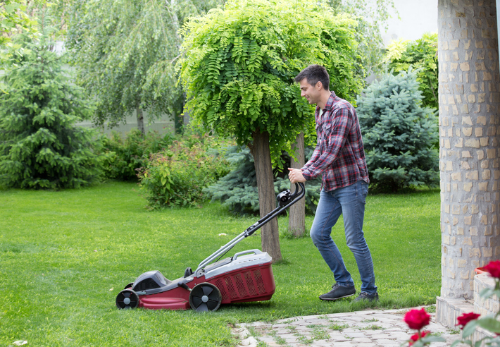 Lawn Tips for Early Spring