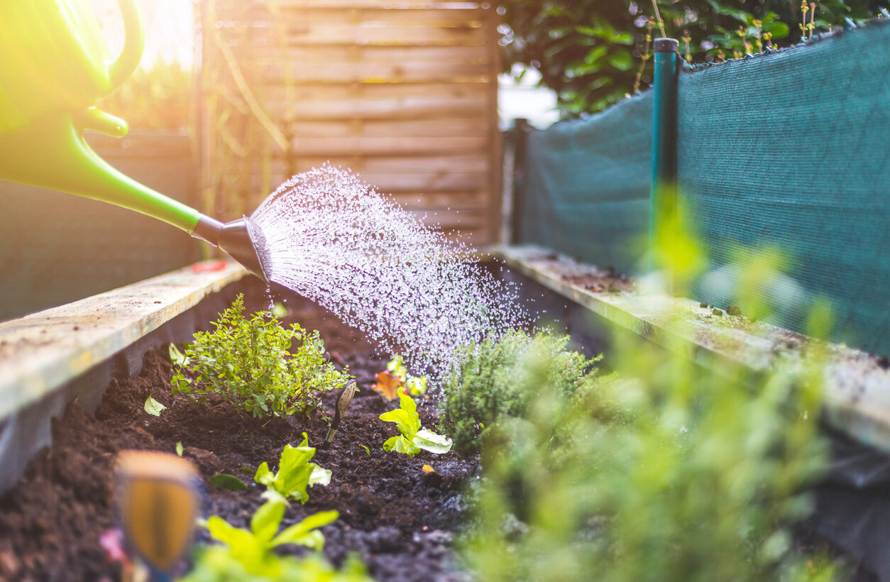 Landscape and Garden Checklist for May